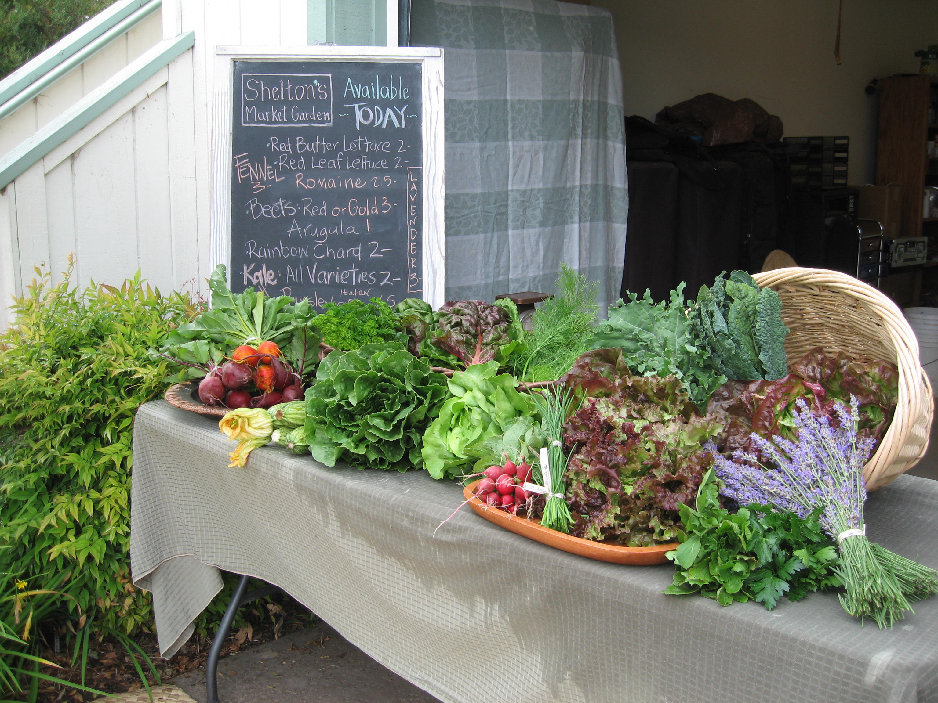 happy long weekend – farm stand open saturday 8 noon